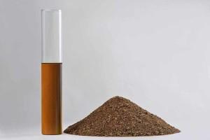 Olio e farine di colza