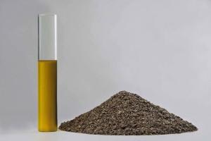 Olio e farine di girasole